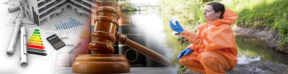 Profesiones de futuro: PERITO JUDICIAL MEDIO-AMBIENTAL - Estudios de  Empresa
